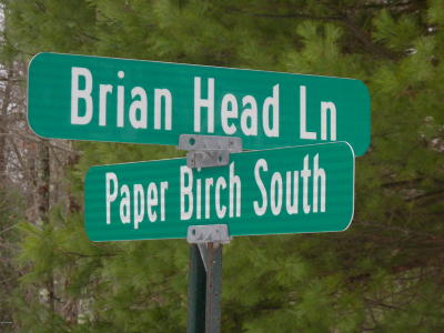 Tanglwood North Residential Lots & Land For Sale: 294 S Paper Birch