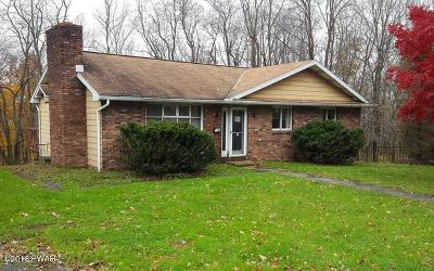 Carbondale Single Family Home For Sale: 150 Honesdale Rd