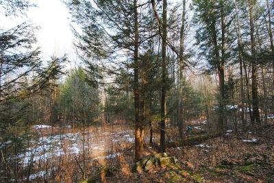 Waymart PA Residential Lots & Land For Sale: $39,900