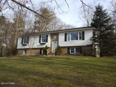 Milford Single Family Home For Sale: 110 Spicebush Ln