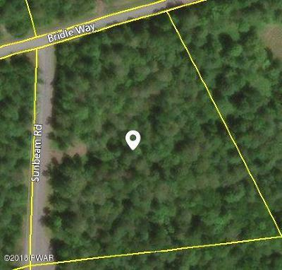 Equinunk PA Residential Lots & Land For Sale: $50,000