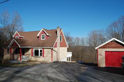 Honesdale Single Family Home For Sale: 366 Laurel Dr