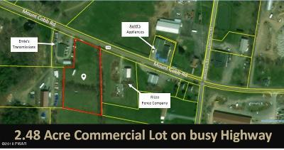 Lake Ariel PA Commercial For Sale: $69,000