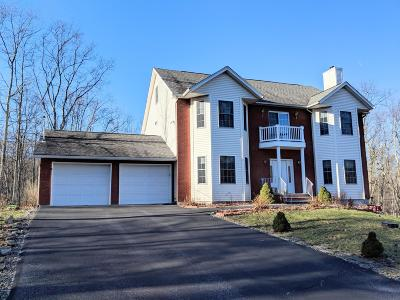 Lords Valley PA Single Family Home For Sale: $379,000