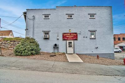 Honesdale Commercial For Sale: 2 Chapel St
