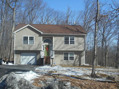 Milford Single Family Home For Sale: 124 Gap View Rd