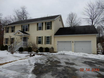 Shohola Single Family Home For Sale: 180 Owego Tpke