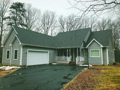 Milford Single Family Home For Sale: 151 Privet Ln