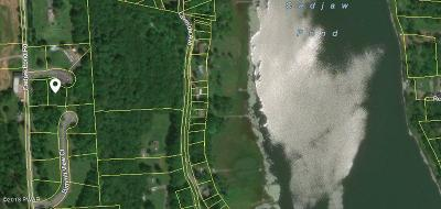 Honesdale Residential Lots & Land For Sale: 108 Cherry View Ct