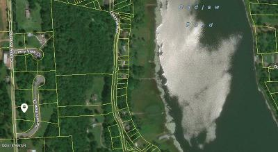 Honesdale Residential Lots & Land For Sale: 17 Summit View Ct