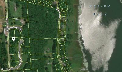 Honesdale Residential Lots & Land For Sale: 27 Summit View Ct