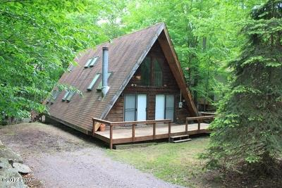 Lake Ariel Single Family Home For Sale: 690 Woodridge Dr