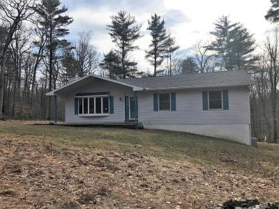 Dingmans Ferry Single Family Home For Sale: 154 Woodland Dr