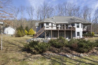 Lackawaxen Single Family Home For Sale: 381 Engvaldsen Rd