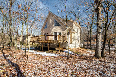 Masthope Single Family Home For Sale: 172 Constitution Dr