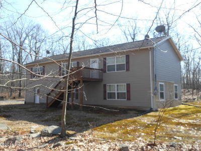 Dingmans Ferry Single Family Home For Sale: 312 Mountain Top Dr