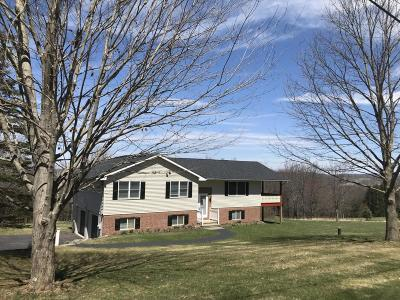 Honesdale Single Family Home For Sale: 73 Deer Ln