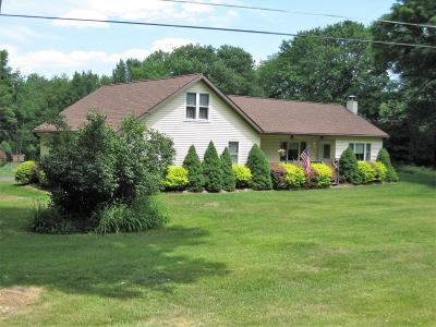 Lake Ariel Single Family Home For Sale: 334 Everly Rd