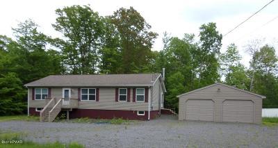 Lake Ariel Single Family Home For Sale: 100 Victoria Cir