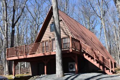 Hemlock Farms Single Family Home For Sale: 206 Washington Dr
