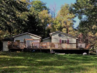 Lake Ariel Single Family Home For Sale: 102 Anderson Rd