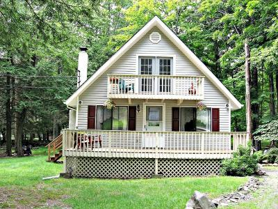 Dingmans Ferry Single Family Home For Sale: 145 Colette Ln