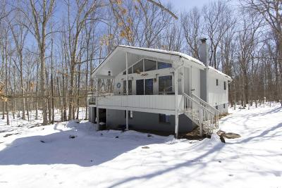 Lackawaxen Single Family Home For Sale: 103 Slalom Ct