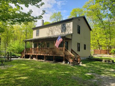 Milford Single Family Home For Sale: 356 Cummins Hill Rd
