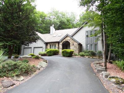 Lake Ariel Single Family Home For Sale: 589 Pocono Ct