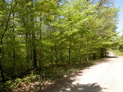 Forest City Residential Lots & Land For Sale: 580 Brace Brook Rd