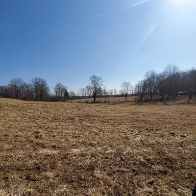 Honesdale Residential Lots & Land For Sale: 1986 Great Bend Tpke