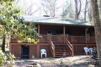 Pike County Single Family Home For Sale: 117 Lake Shore Rd