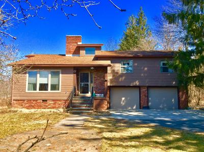 Carbondale Single Family Home For Sale: 131 Salem Rd
