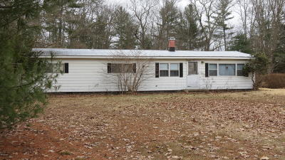 Narrowsburg NY Single Family Home For Sale: $49,000