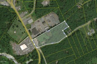 Wayne County Commercial For Sale: 9 Swamp Brook Rd