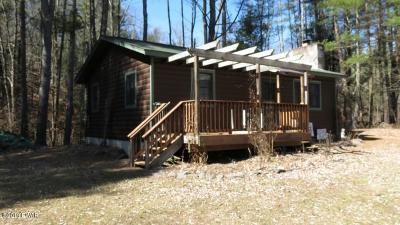 Narrowsburg NY Single Family Home For Sale: $224,900