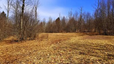 Equinunk Residential Lots & Land For Sale: Lot 7 Longwood Dr