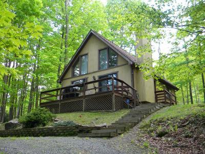 Lake Ariel Single Family Home For Sale: 107 Ridge Rd
