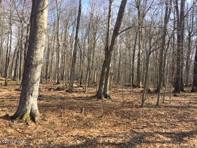 Gouldsboro Residential Lots & Land For Sale: Lot 28 Cheyenne Trl