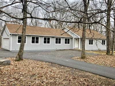 Hawley Single Family Home For Sale: 137 Friendship Dr
