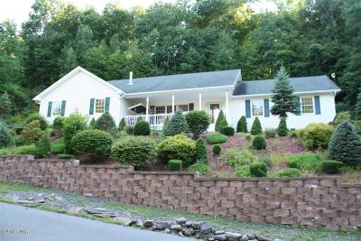 Honesdale Single Family Home For Sale: 211 Spring Hill Rd