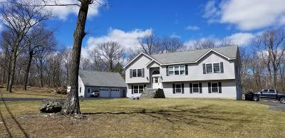 Dingmans Ferry Single Family Home For Sale: 100 Elm Cove