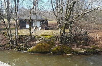 Single Family Home For Sale: 297 Yarnes Rd