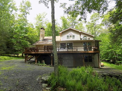 Lake Ariel Single Family Home For Sale: 1189D2 Goose Pond Rd