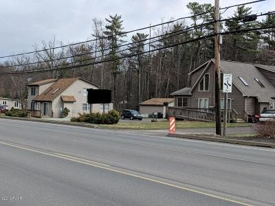 Pike County Commercial For Sale: 2519 &2521 Route 6