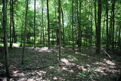 Damascus Residential Lots & Land For Sale: Callicoon Rd