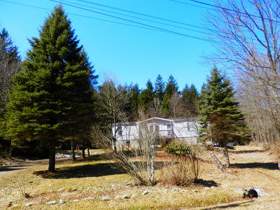 Honesdale Single Family Home For Sale: 135 Prompton Rd