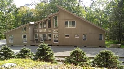 Lords Valley PA Single Family Home For Sale: $365,000