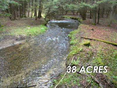 Honesdale Residential Lots & Land For Sale: 401 Rosehill Road