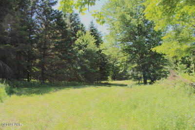 Wayne County Residential Lots & Land For Sale: 1698 Great Bend Tpke